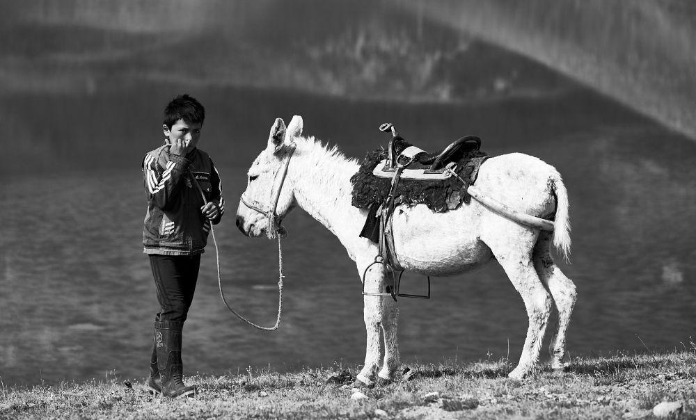 Мальчик стоит рядом со своим осликом и занят очень важным делом