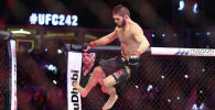UFC чемпиону Хабиб Нурмагомедов. Архивдик сүрөт