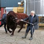 Улуу Британиянын премьер-министри Борис Жонсон Шотландиядагы фермалардын биринде