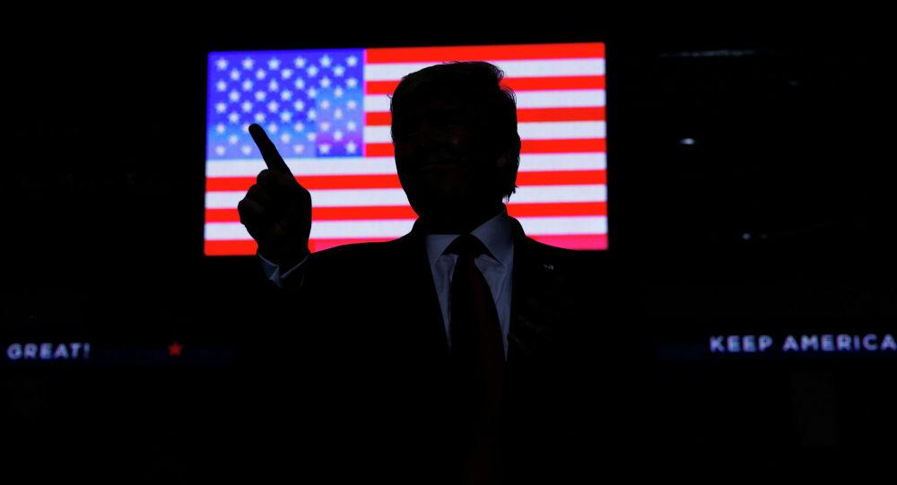 Президент Дональд Трамп на фоне флага США. Архивное фото