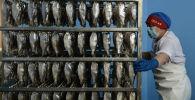 Подготовка рыбы к сушке в цехе. Архивное фото