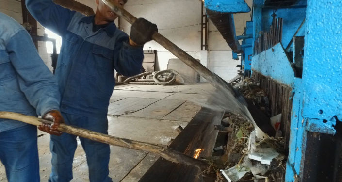 Кому-то будет трудно в это поверить, однако жители Бишкека смывают в канализацию не только отходы жизнедеятельности, но и туши животных. Причем это не самая поразительная находка работников станции аэрации.