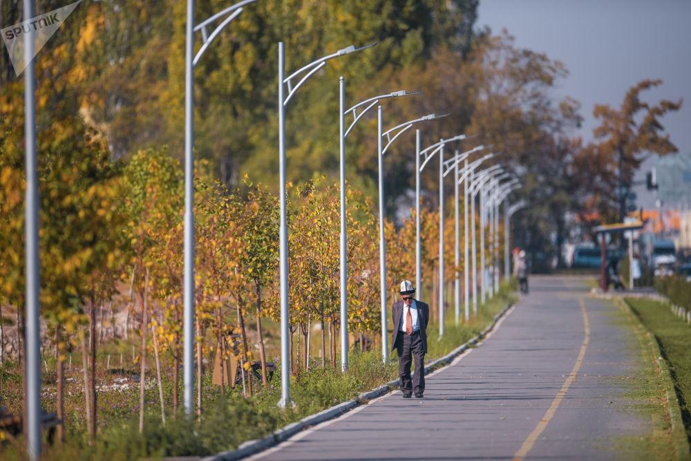Пожилой мужчина гуляет по пешеходной зоне вдоль Южной магистрали в Бишкеке