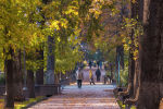 Люди идут по бульвару Эркиндик в Бишкеке