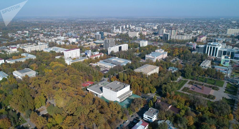 Вид на центр Бишкека с дрона. Архивное фото