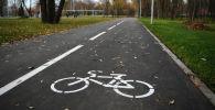 Велодорожка. Архивное фото