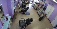 В штате Арканзас (США) олень врезался в витрину салона красоты и сильно напугал сотрудницу заведения. Видео опубликовано на Youtube.