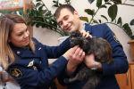 В России полицейские поймали кошку, которую преступники использовали в качестве наркокурьера. С ее помощью пытались переправить наркотики в тюрьму.