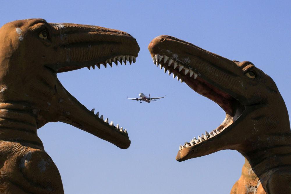 Самолет пролетает над парком Долина животных в Чандигархе (Индия)