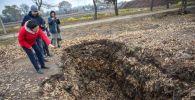 Компостные ямы, где перерабатывается собранная в парках и на улицах листва для получения растительного гумуса