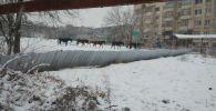 Бишкек шаардык милициясы көп кабаттуу үйдүн короосунда жайылып жүргүн бир үйүр (жети жылкы) жылкынын ээсин издеп жатат