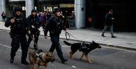 Полицейские с служебными собаками недалеко от места происшествия на Лондонском мосту в Лондоне. Великобритания, 29 ноября 2019 года