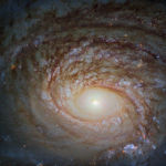 Спиральная галактика NGC 772, снятая телескопом Хаббл