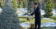 Президенты стран Центральной Азии высадили саженцы в Ташкенте