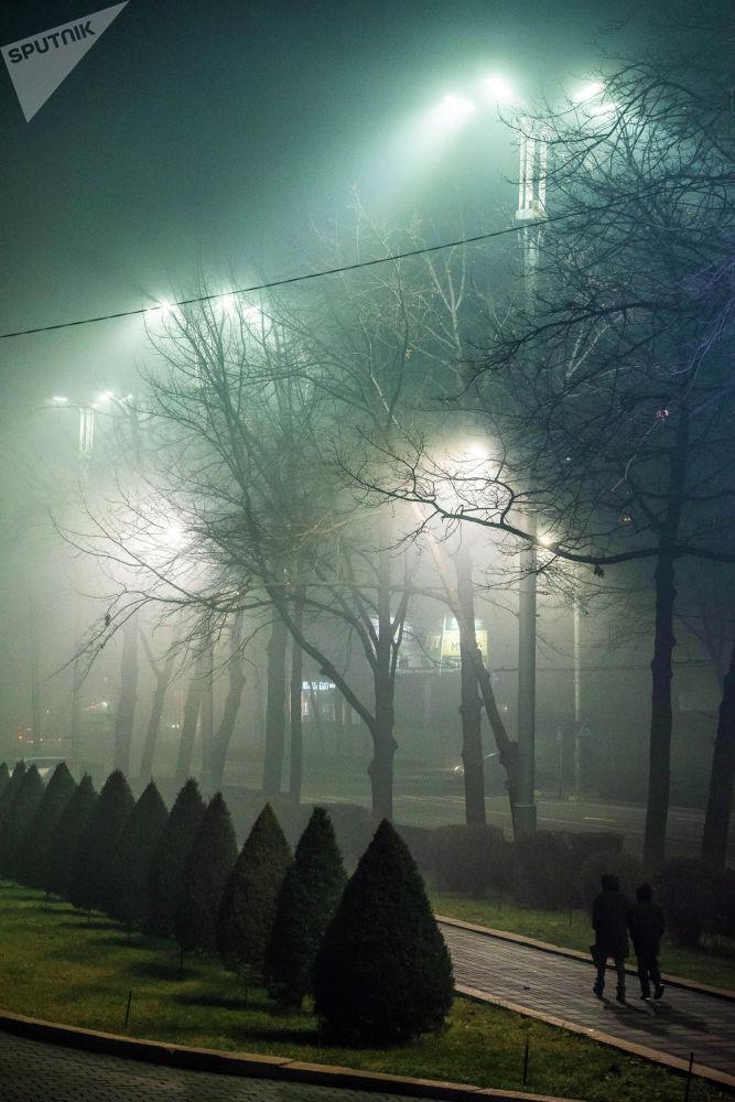 Кыш, туман, көчө, сейилдегендер...