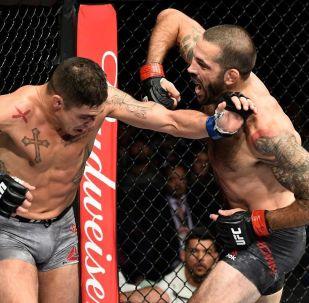 В Лас-Вегасе (США) 14 декабря пройдет UFC 245 — заключительный турнир 2019 года. В поединках примут участие известные нокаутеры.