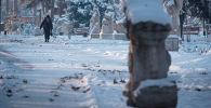 Женщина идет по Дубовому парку после снегопада в Бишкеке