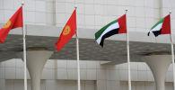 Флаги Кыргызстана и ОАЭ. Архивное фото