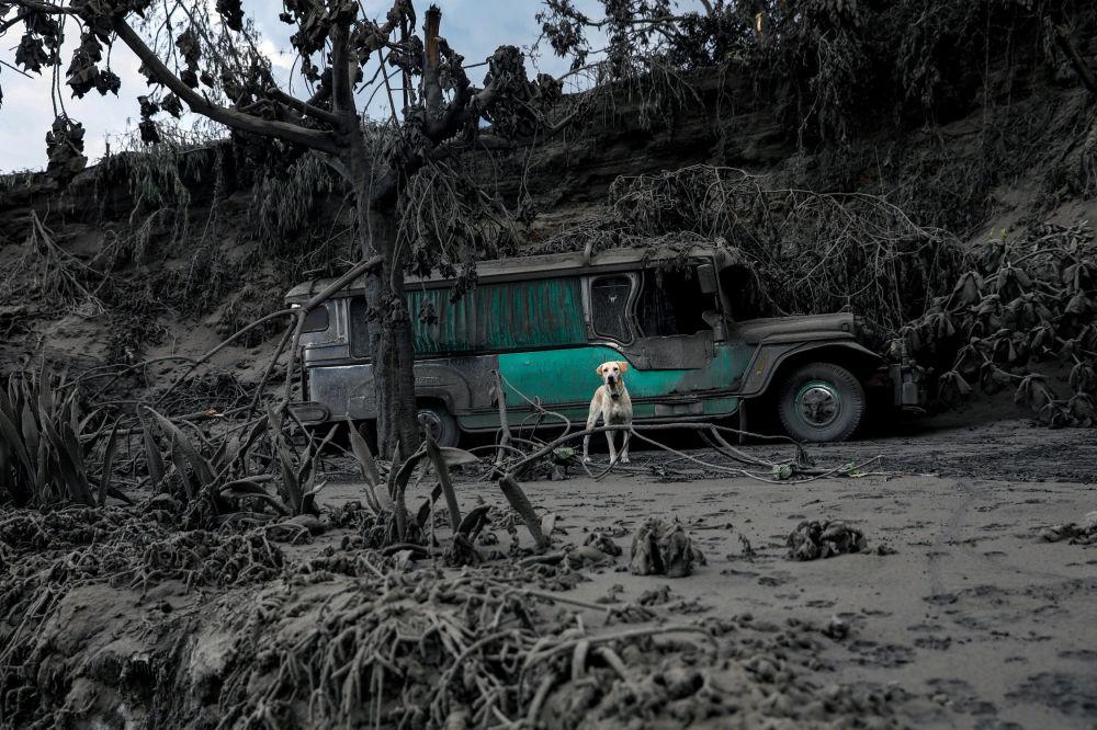 С 12 по 15 января сейсмологи зарегистрировали 625 вулканических землетрясений