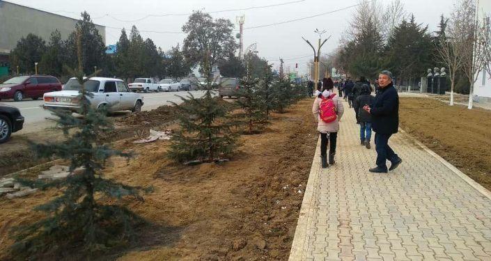 Представители местной власти во время посадки елки на новой аллее Российская газета в Баткене