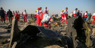 На месте крушения пассажирского лайнера Украины Boeing 737-800 неподалеку от тегеранского международного аэропорта имени Имама Хомейни.