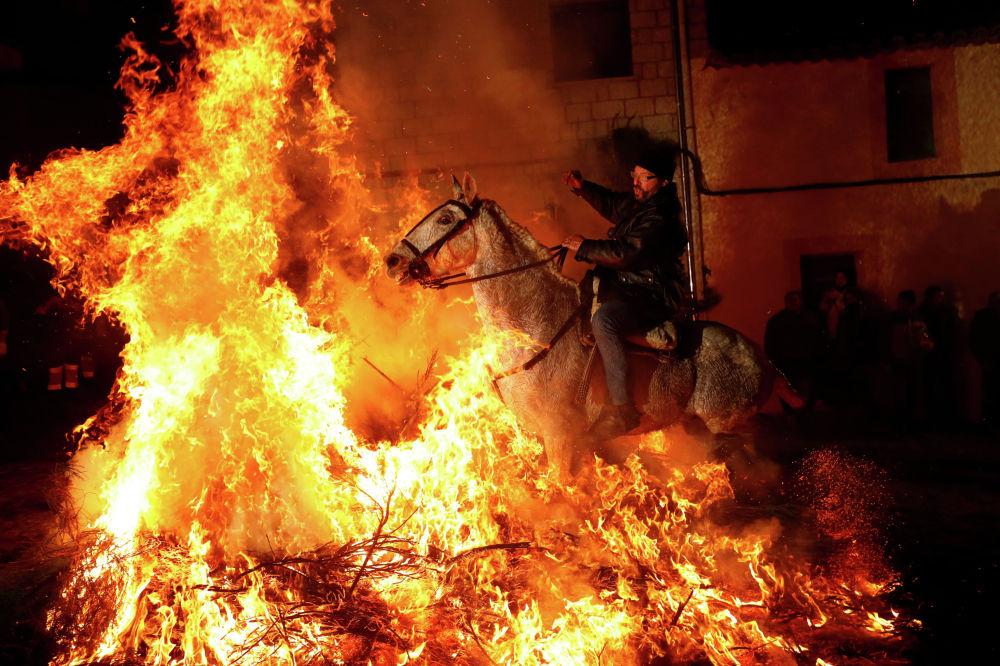 Всадник проходит через огонь во время ежегодного празднования Luminarias в канун дня Святого Антония, покровителя животных в деревне Сан-Бартоломе-де-Пинарес, к северо-западу от Мадрида. Испания, 16 января 2020 года