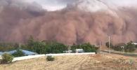 Около полугода в Австралии бушуют пожары. За последнюю неделю на страну обрушились еще две природные аномалии — песчаная буря и крупный град.