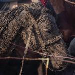 Түндөсү бир аз кар жаап койгондуктан жер ылай болуп аттар сыйгаланып жыгылып жатты. Бул көзүнө чейин ылай болгон аргымак да чалынып жыгылып, тебелендиде калып кала жаздады