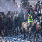 Ош облусунун Кара-Суу районунун Савай айылында ири аламан улак өттү