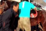 В соцсетях распространяется ролик со звуковым сопровождением и применением монтажа момента, когда спикер пытается сесть на лошадь.