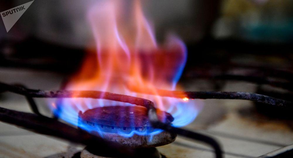 Конфорка газовой плиты. Архивное фото
