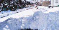 Чолпон-Атада 19-февралга караган түнү катуу кар жаап, бийиктиги 60 сантиметрге жетти