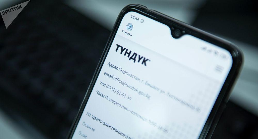 Открытый на смартфоне сайт электронного взаимодействия Түндүк.