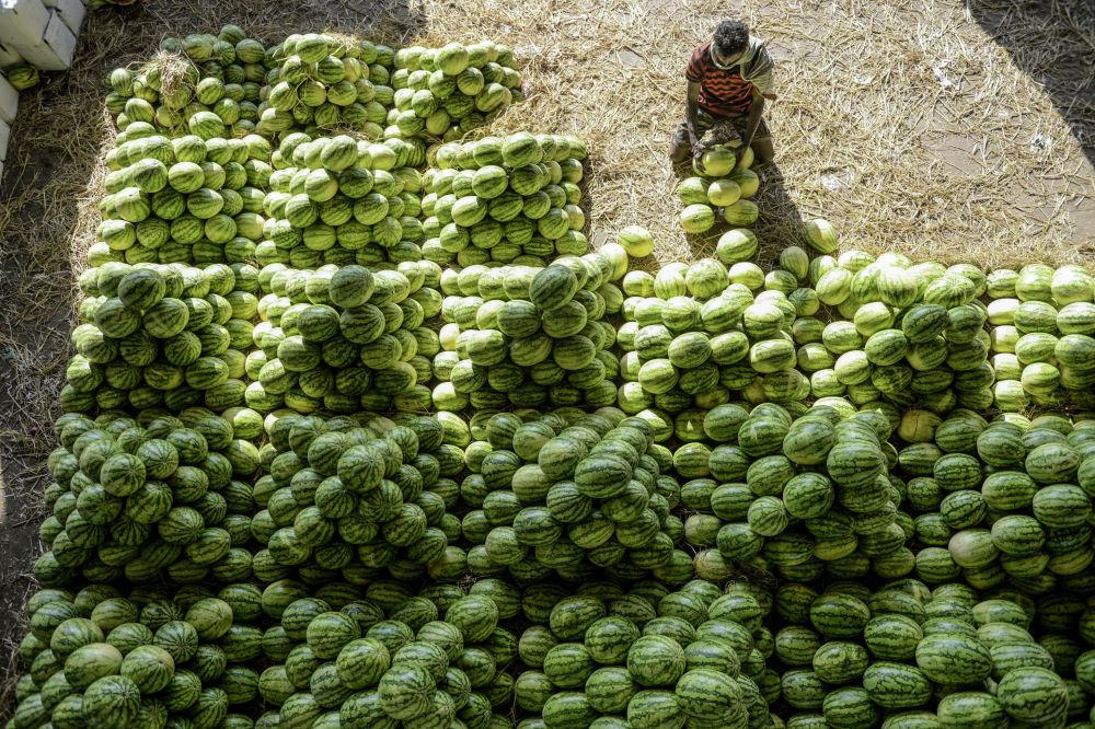 Продавец арбузов на оптовом рынке Гаддианнарама в индийском городе Хайдарабаде