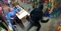 Продавщица в одной из деревень Польши шваброй отбилась от грабителя, ворвавшегося в магазин с пистолетом.