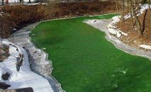 Река окрашенная в зелены цвет. Архивное фото