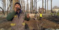 Сотрудник муниципального предприятия Бишкекзеленхоз Мирбек Турганбаев спел песню для коллег, которые занимаются благоустройством нового парка.