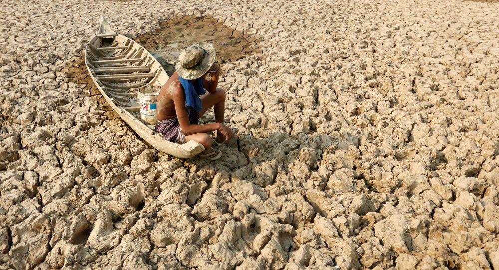 Камбоджадагы Кандал аймагындагы кургакчылык. Архивдик сүрөт