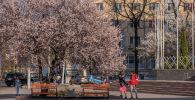 Бишкектин көчөлөрүндө сейилдеп жүргөн жаштар. Архивдик сүрөт
