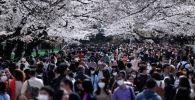 Люди в медицинских масках проходят рядом с цветущими вишнями в парке Уэно в Токио (Япония). Архивное фото