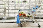 Корзина с продуктами на фоне пустых полок в супермаркете в Амстердаме, Нидерланды. 13 марта 2020 года