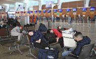 Пассажиры в ожидании рейса в аэропорту Шереметьево. Архивное фото