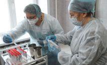 Врачи Клинического медицинского центра подписывают пробирки с образцами биоматериалов