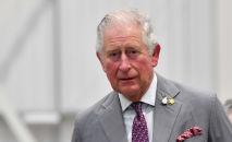 Сын королевы Великобритании принц Чарльз. Архивное фото