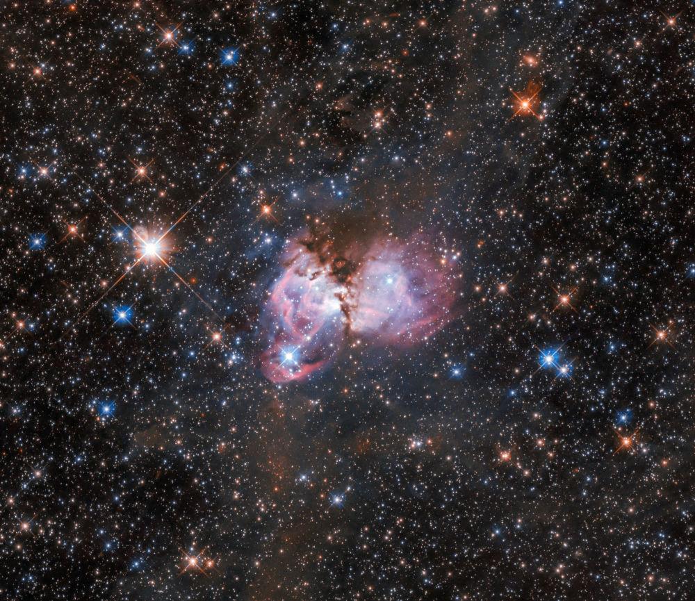 Звездная колыбель, находящаяся на окраине туманности Тарантул