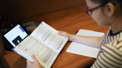 Школьница во время дистанционного обучения дома. Архивное фото