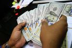 Киши доллар купюраларды кармап турат. Архив