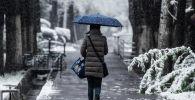 Девушка с зонтом идет по одной из Бишкека во время снегопада. Архивное фото