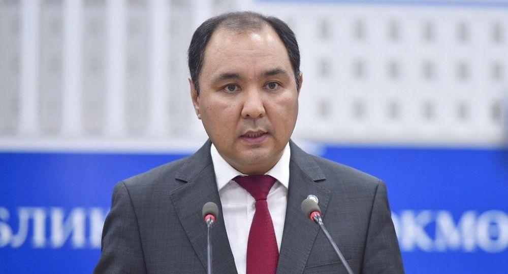Тышкы иштер министринин биринчи орун басары Нуран Ниязалиев