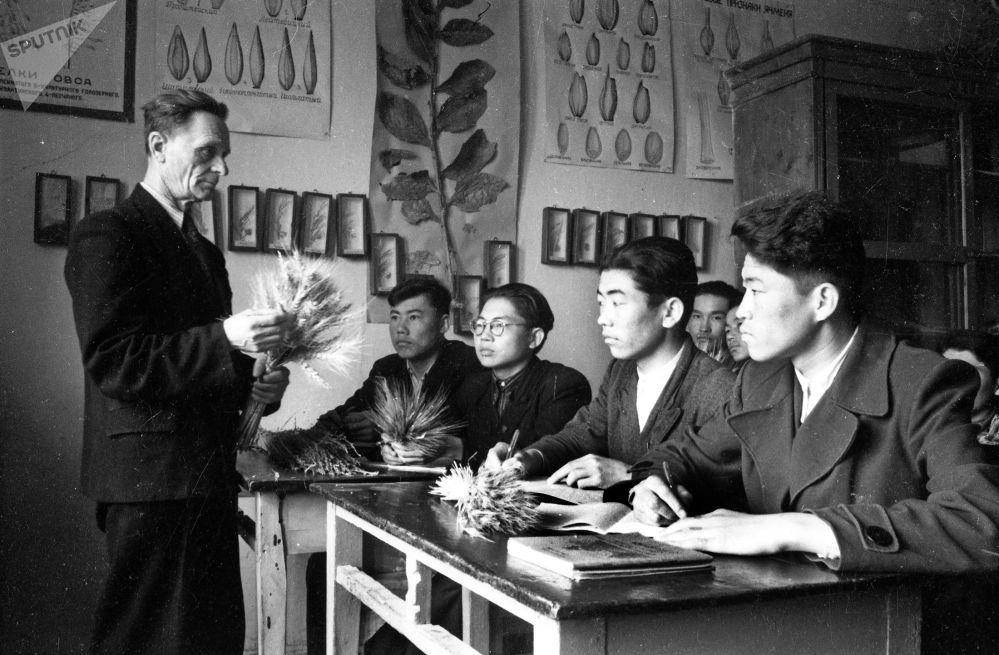 Кечки мектептин окуучулары ботаника сабагында. Согуш жылдарынан кийин айыл чарбасын калыбына келтирүүгө көп эмгек жумшалган.
